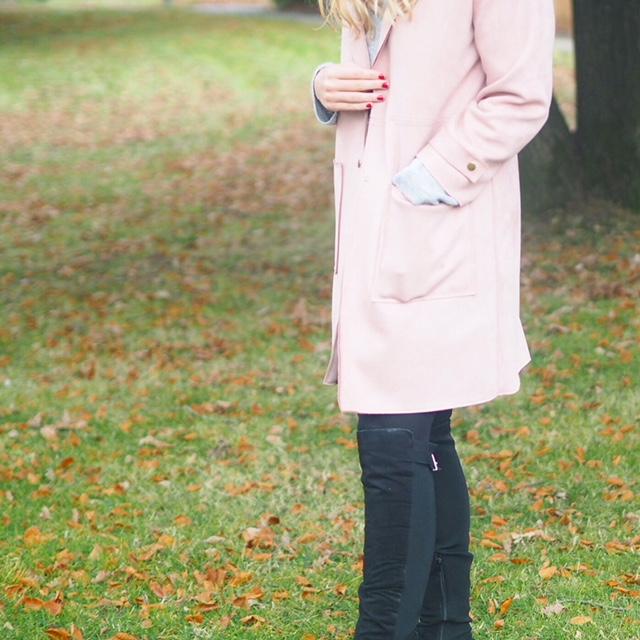 Zara Pink Jacket